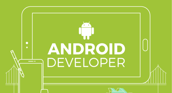 Professional Android Developer's Guide to get started
